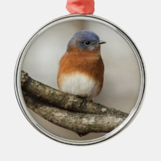 Eastern Bluebird Christmas Ornament