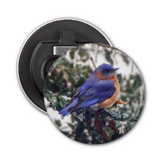 Eastern Bluebird Magnet Backed Bottle Opener