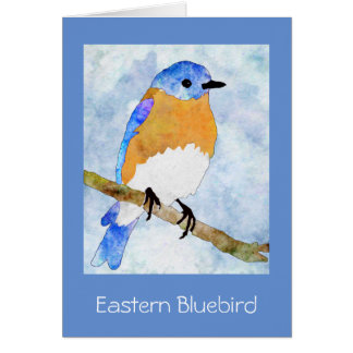 Eastern Bluebird – male - watercolor Notecard