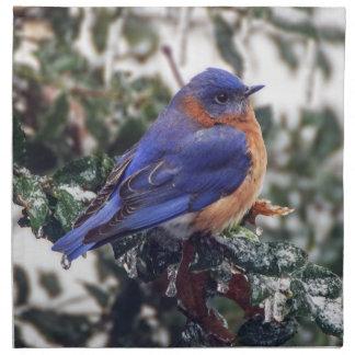Eastern Bluebird on Holly Cloth Napkin