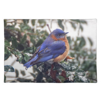 Eastern Bluebird on Holly Cloth Placemat