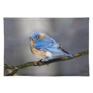 Eastern Bluebird on Limb Cloth Placemat