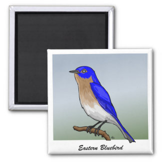 Eastern Bluebird rev.2.0 Buttons and Flair Magnets