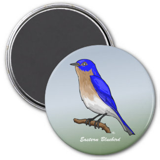 Eastern Bluebird rev 2 0 Buttons and Flair Refrigerator Magnets