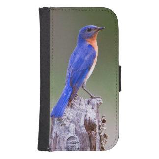 Eastern Bluebird (Sialia Sialis) Adult Male Samsung S4 Wallet Case
