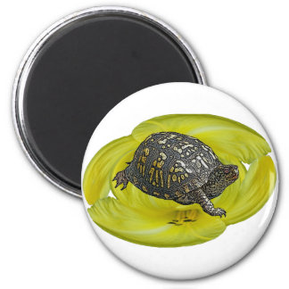Eastern Box Turtle Coordinating Items 6 Cm Round Magnet