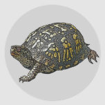 Eastern Box Turtle Coordinating Items Round Sticker
