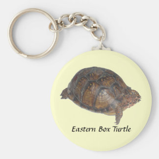 Eastern Box Turtle Key Ring