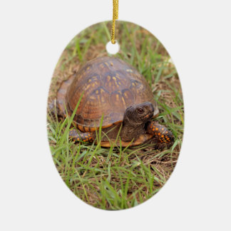 Eastern Box Turtle (North Carolina and Tennessee) Christmas Ornament