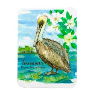 Eastern Brown Pelican Louisiana State Bird Magnet