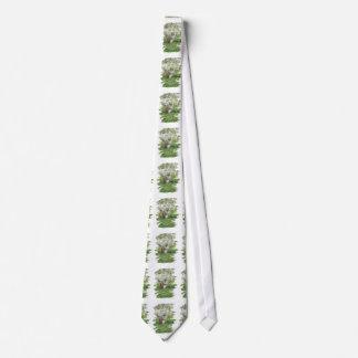 Eastern Chipmunk Tie