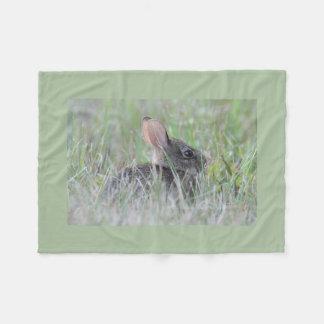 Eastern cottontail baby bunny fleece blanket