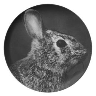 Eastern Cottontail Bunny Rabbit Right Plate