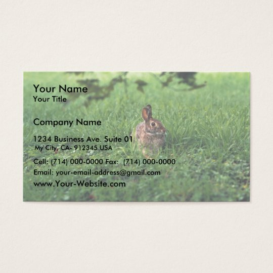 Eastern Cottontail Business Card