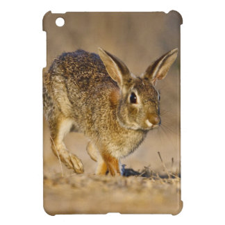 Eastern cottontail rabbit hopping iPad mini cases