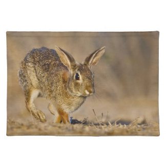 Eastern cottontail rabbit hopping placemat