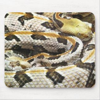 Eastern Diamond Back Rattle Snake Mouse Pad