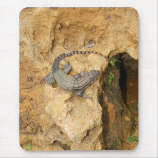 Eastern Fence Lizard Mouse Mat