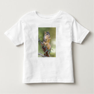 Eastern Fox Squirrel, Sciurus niger, adult Toddler T-Shirt