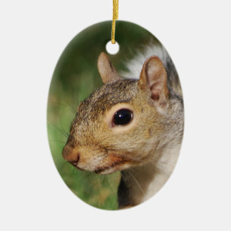 Eastern Gray Squirrel ornament