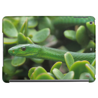 Eastern Green Mamba (Dendroaspis Angusticeps) Case For iPad Air