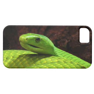 Eastern Green Mamba Dendroaspis Angusticeps Case For The iPhone 5