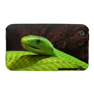 Eastern Green Mamba Dendroaspis Angusticeps iPhone 3 Cover