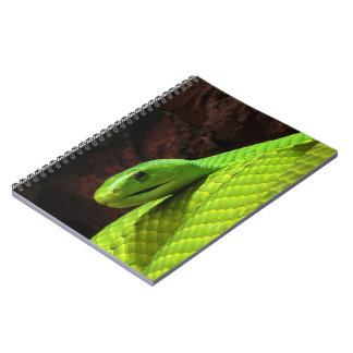 Eastern Green Mamba Dendroaspis Angusticeps Spiral Note Book