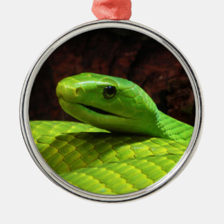 Eastern Green Mamba Dendroaspis Angusticeps Silver-Colored Round Decoration