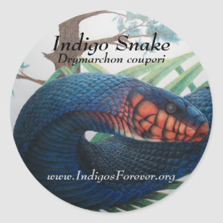 Eastern Indigo Snake Stickers