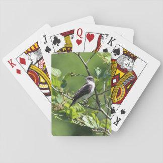 Eastern Kingbird Fledgling Playing Cards