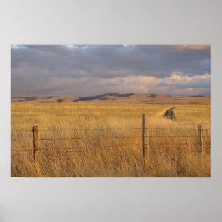 Eastern Oregon at Dusk Poster