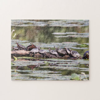 Eastern Painted Turtle Jigsaw Puzzle