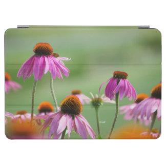 Eastern Purple Coneflowers iPad Air Cover