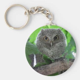 Eastern Screech Owl Basic Round Button Key Ring