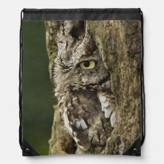 Eastern Screech Owl Gray Phase) Otus asio, Drawstring Bag