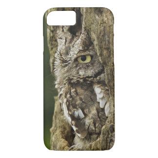 Eastern Screech Owl Gray Phase) Otus asio, iPhone 8/7 Case