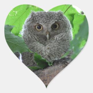 Eastern Screech Owl Heart Sticker