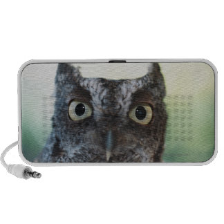 Eastern Screech Owl Portrait Showing Large Eyes Portable Speakers