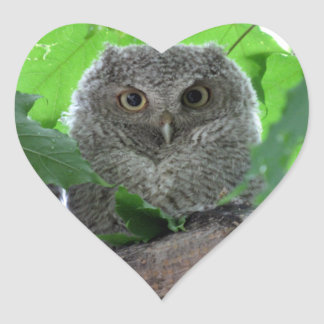 Eastern Screech Owl Heart Sticker
