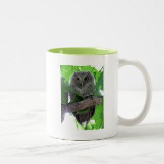 Eastern Screech Owl Two-Tone Mug