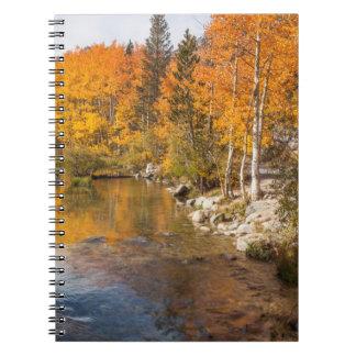 Eastern Sierra, Bishop Creek, California Outlet Spiral Notebook