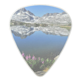 Eastern Sierra Mountains Acetal Guitar Pick