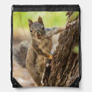Eastern Sierra Nevada Drawstring Bag
