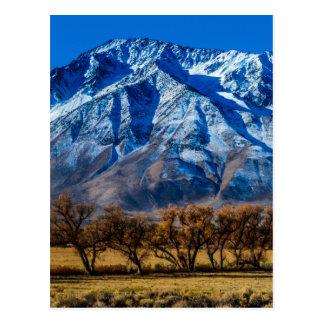 Eastern Sierra Nevada Fall - Bishop - Californa Postcard