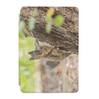 Eastern Sierra Nevada iPad Mini Cover
