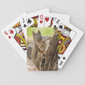 Eastern Sierra Nevada Playing Cards