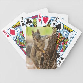 Eastern Sierra Nevada Poker Deck