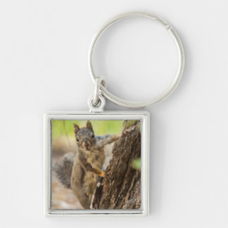 Eastern Sierra Nevada Silver-Colored Square Key Ring