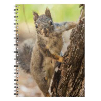 Eastern Sierra Nevada Spiral Notebook